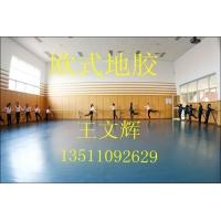 舞蹈地板 进口舞蹈地板 专业舞蹈地板