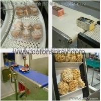 山东食品烘烤输送机