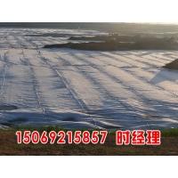 hdpe土工膜0.2mm-3.0mm规格,防渗土工膜