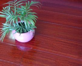 书香世佳地板-实木地板-2