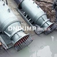 DN12000m3/h雪橇式潜水轴流泵