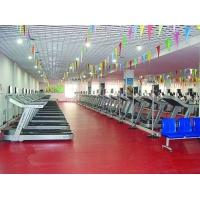 室内橡胶地板 塑胶地板 运动场休闲场等场地专用地板