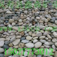 鹅卵石 鹅卵石价格 鹅卵石厂家