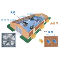 南京喇叭口风机安装//南京工厂通风换气降温除尘设备