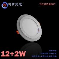 LED蓝加白12+2W双色面板灯