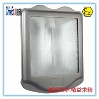防水防腐防眩优质路灯