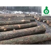 进口美国白腊木 水曲柳 纽约州防腐防虫木材 锯切级 原木批发