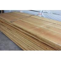 樟子松烘干板、自然宽樟子松、家具材料、樟子松