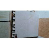 锦丽莱陶瓷8831