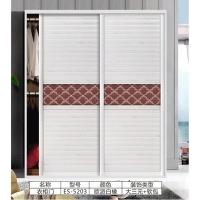 丽迪亚衣柜-衣柜门系列衣柜门ES-5203