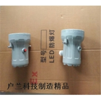 免维护BSD-LED防爆视孔灯BAK51-LED防爆灯5W1