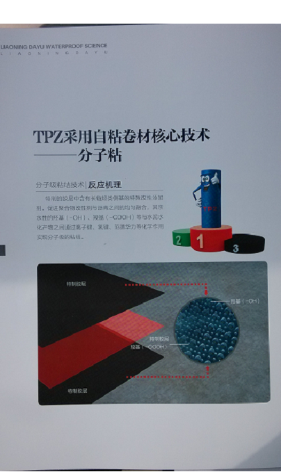 TPZ红芯分子粘高分子彩陶防水卷材