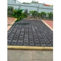 厂家供应舒布洛克砖25025070、井字型草坪砖
