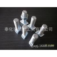 专业生产加工预埋槽用T型螺栓