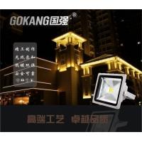 国强光电  LED投光灯 高亮低耗性能超优