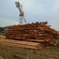 恒月品牌现货供应各种规格型号防腐油木杆油炸油木杆通信电杆