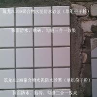筑龙209聚合物水泥防水砂浆粘结瓷砖