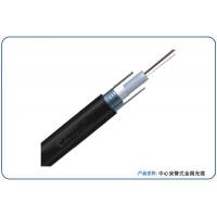 供应江西普天12芯中心束管式室外单模光缆