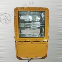 海洋王BFC8110-J400防爆泛光灯