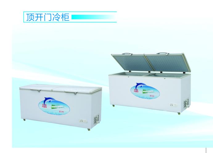 食品冷冻冷藏柜 饭店酒店专用冰柜
