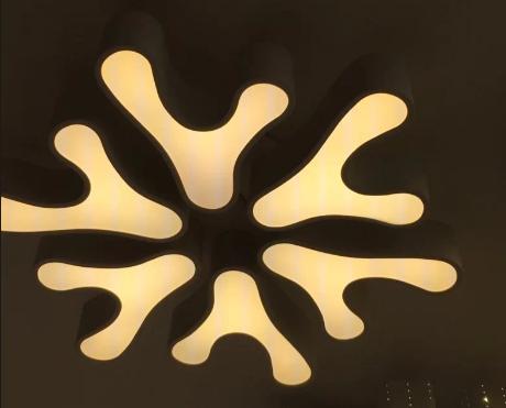 大气吸顶灯 异形客厅灯卧室灯餐厅灯简约时尚灯具个性led灯饰