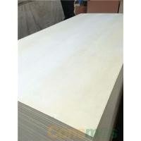 明拓杨木胶合板贴漂白杨木三胺基板