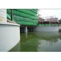防水涂料 防碳化防水涂料 河道耐冲刷防水涂料