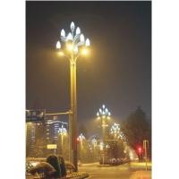 四川路灯厂|四川路灯厂家|四川路灯生产厂家_玉兰灯