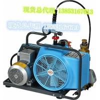 意大利科尔奇充气泵MCH6/EM220V