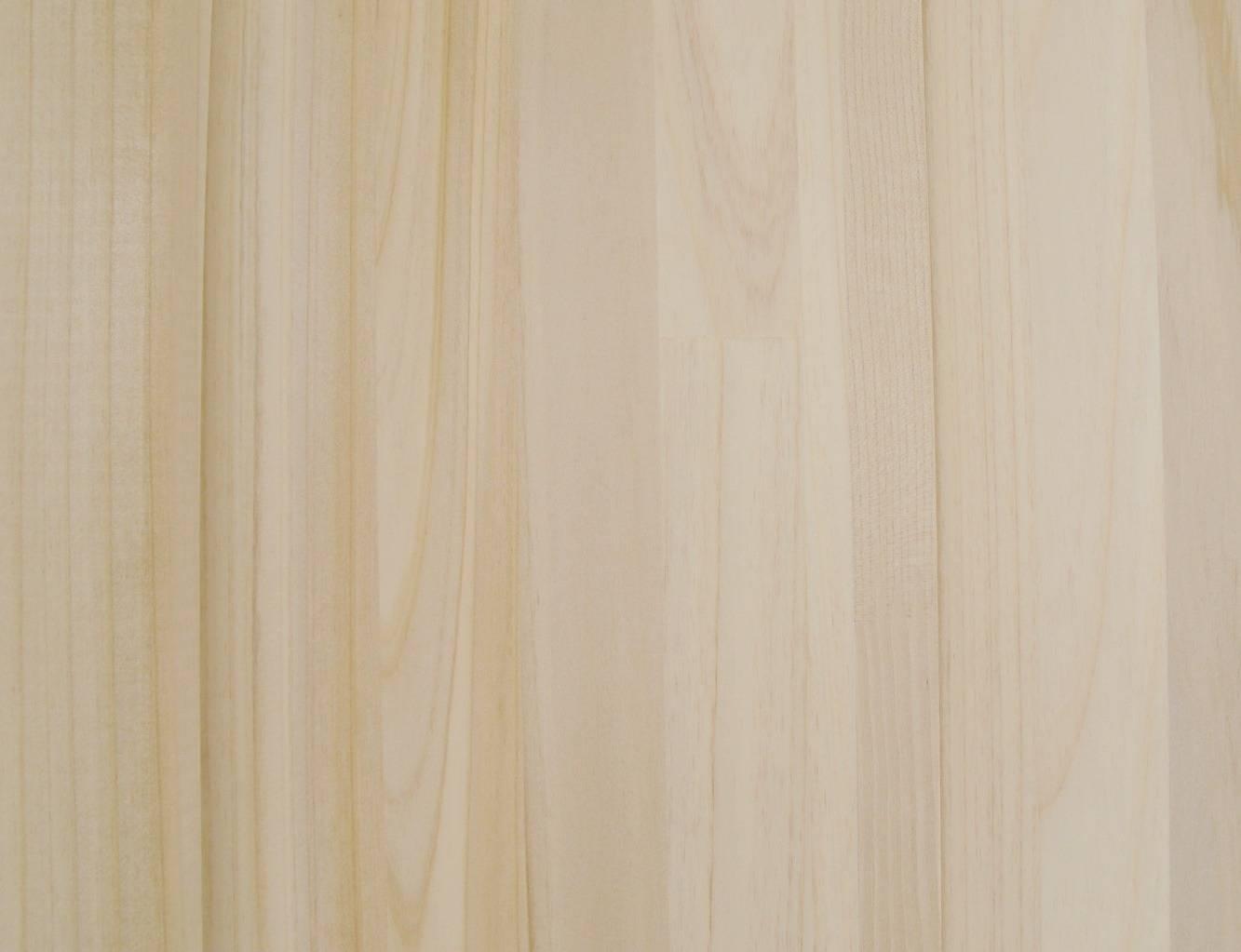 背景素材肝木林