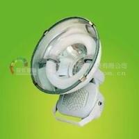 LED大功率投光灯 120W泛光灯 冠虹投光灯,集成厚外观