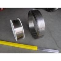 PP-TIG-309Cr24Ni13不锈钢钨极氩弧焊丝