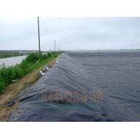 防止化工沉淀池防渗材料