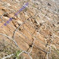 山坡钢丝绳防护网