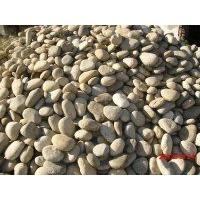 滄州園林鵝卵石,滄州鵝卵石可靠貨源