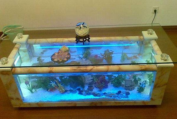 自制生态超白鱼缸玻璃