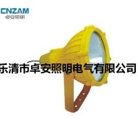 BTC8210防爆投光灯