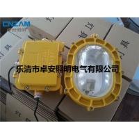 BFC8120 海洋王专业灯具 防爆泛光灯具