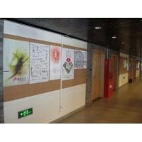 供应学校宣传栏材料_告示板展示板_扎图钉墙板