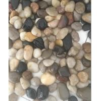 供应鹅卵石价格品牌型号