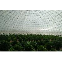 泡泡花园鸟巢温室 鸟巢温室设计 圆形温室价格