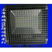 监狱专用照明灯sd-tx-50防爆投光灯