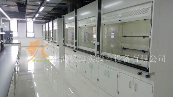 实验室全钢通风柜型号FJ-QGTFG1-5