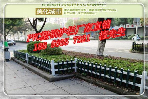 专业生产PVC绿化护栏、美好乡村护栏、塑钢草坪围栏
