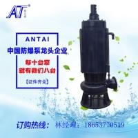 安泰泵业供应WQB25-15-3小型防爆潜污泵