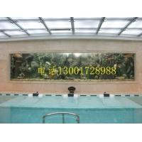 济南大型观赏鱼缸