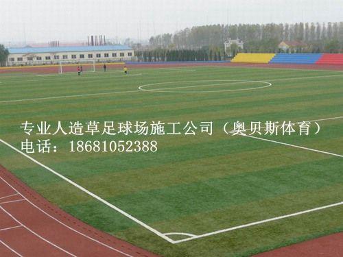 国际足球:的体育人工智