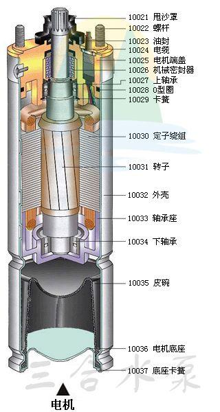 深井泵电机结构