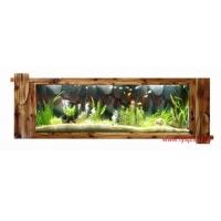 中小投资项目河南郑州生态水族壁画 生态壁画鱼缸 生态鱼缸