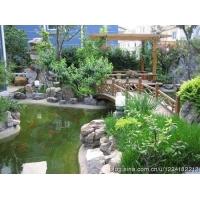 别墅景观绿化